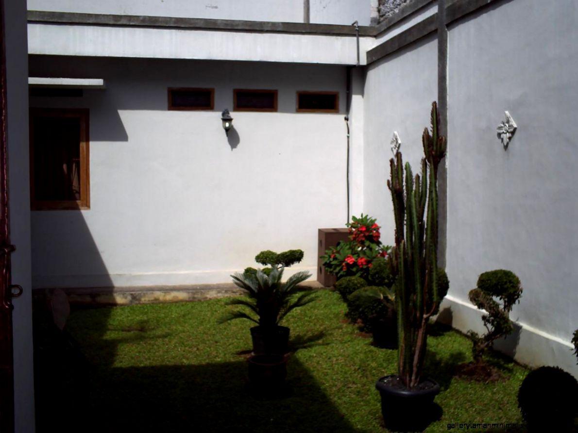 model taman belakang rumah minimalis gallery taman minimalis