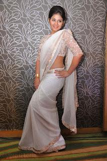 Anjali latest Glamorous pics in saree 048