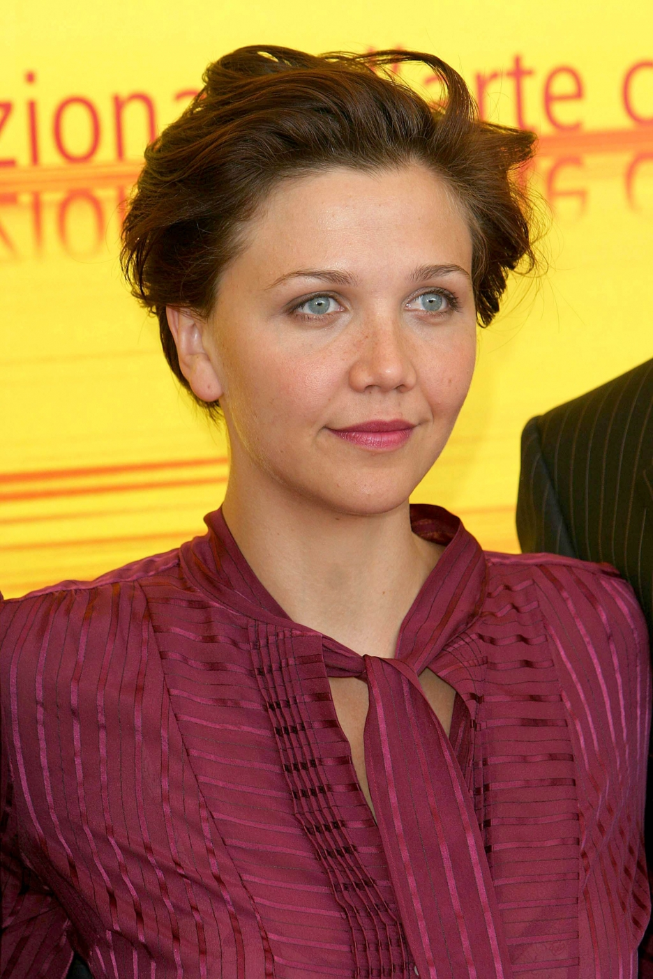 Maggie Gyllenhaal HD Wallpapers High Definition Free