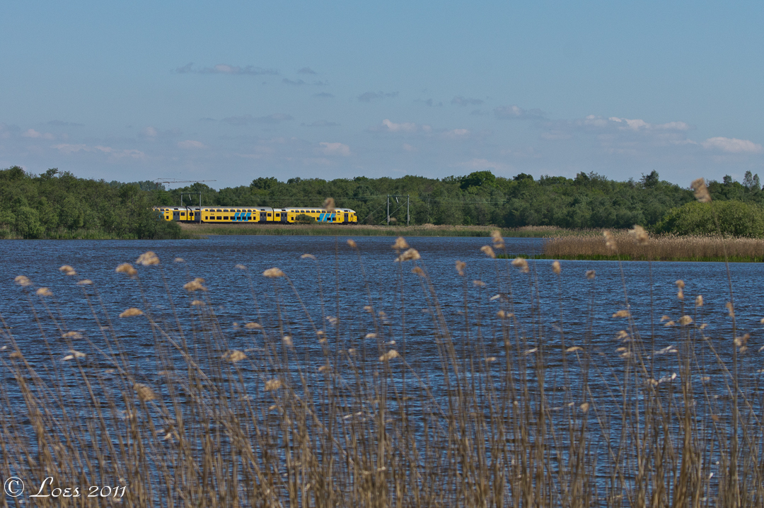 Afbeeldingsresultaat voor Naardermeer trein