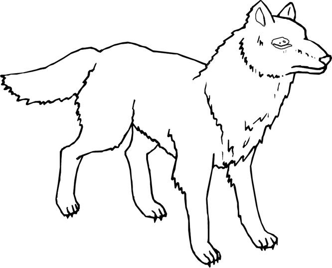 Wild Animal quot Wolf quot Printable