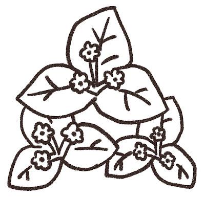 ブーゲンビリアのイラスト(花) モノクロ線画