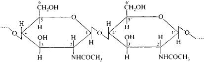 molekul kitin