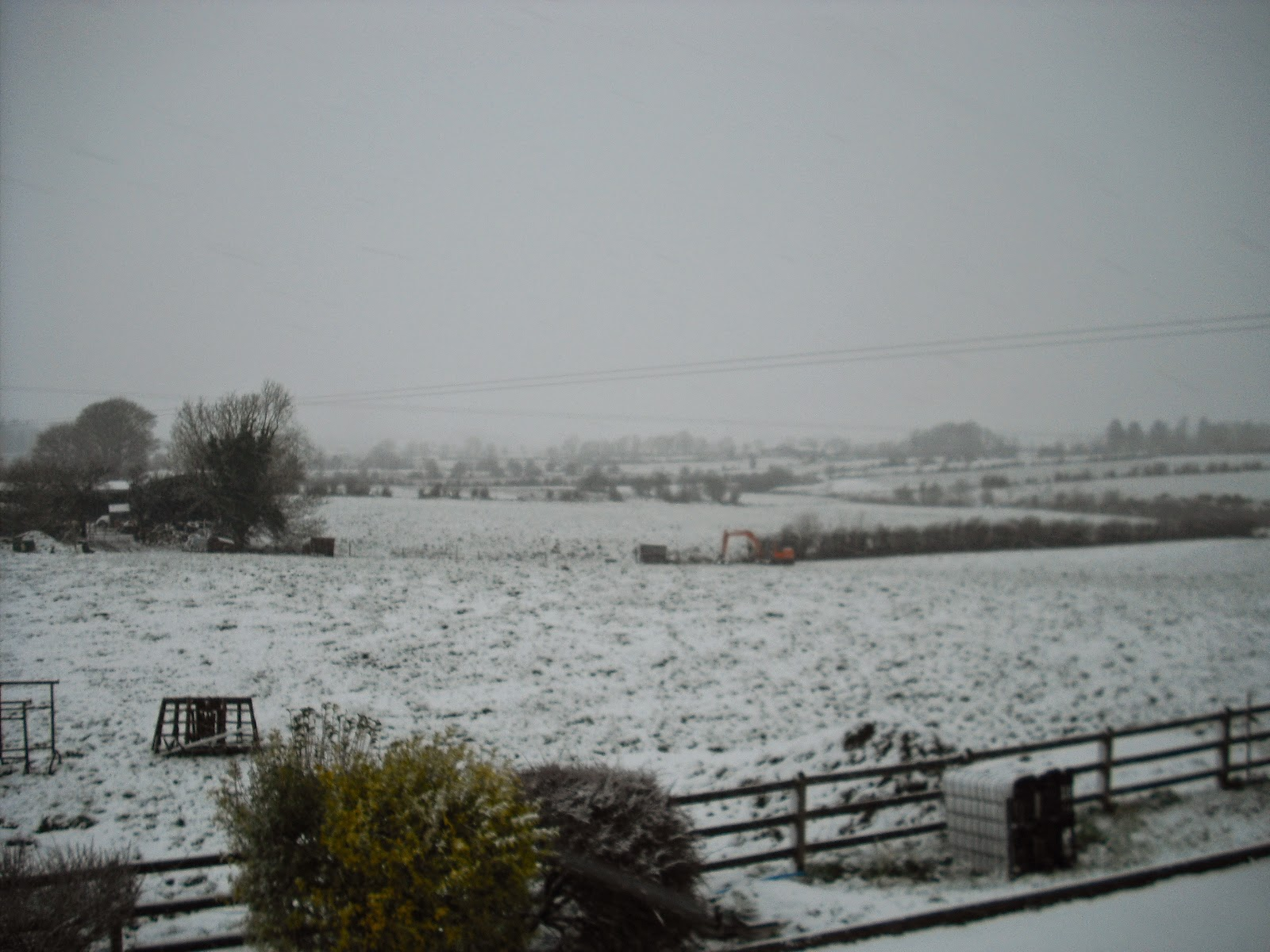 Winter wonderland, in spring: Creevy, Lisacul, Co Roscommon.