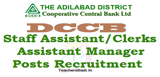 Adilabad DCCB,Staff Assistant Clerks,Assistant Manager Posts