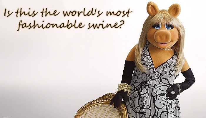 The Fashionable Miss Piggy