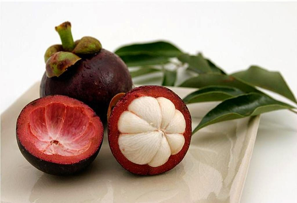 Medical Advantages of Mangosteen Fruit