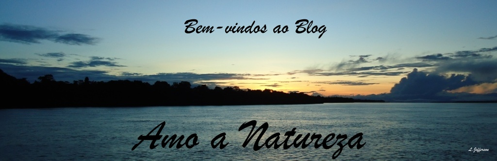Amo a Natureza