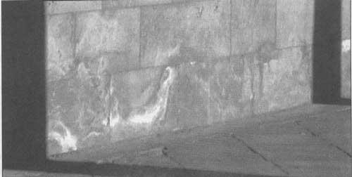 Remonte capilar en un muro de piedra caliza.