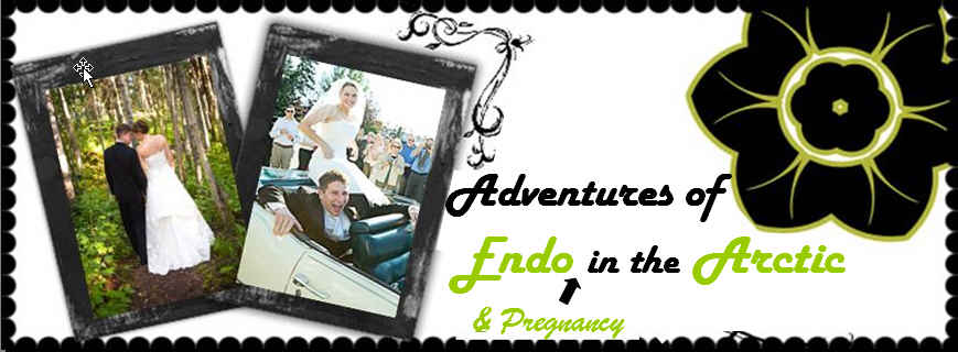 Adventures of Endo & Pregnancy in the Arctic