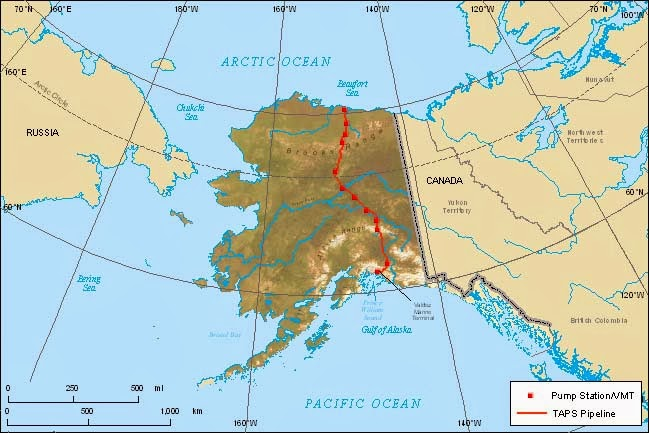 Alpine Tundra In Alaska  The Alaskan Alpine Tundra