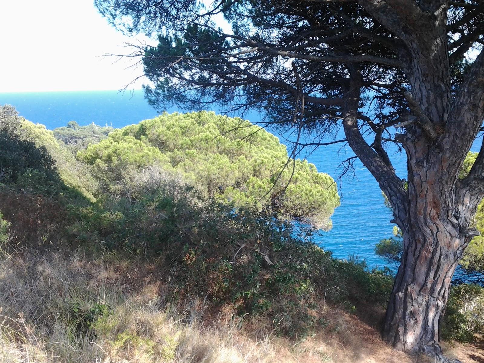 Camí de Ronda Tossa de Mar