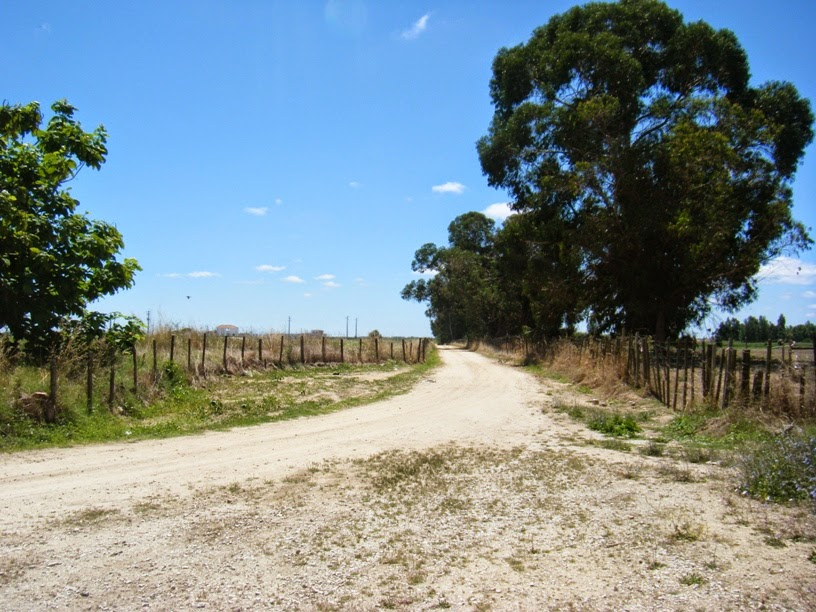 Estrada em terra batida para acesso á praia