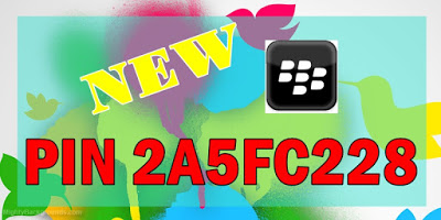PIN BLACKBERRY BARU