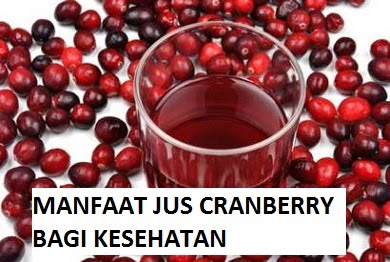 6 Manfaat Buah Cranberry Bagi Kesehatan