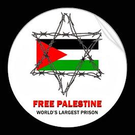 Palestina Livre: Eu apoio!