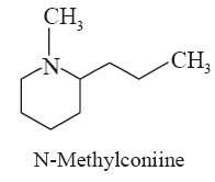 N-Methylconiine