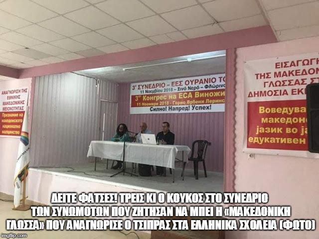 ΔΕΙΤΕ ΦΑΤΣΕΣ! ΤΡΕΙΣ κι ο κούκος στο συνέδριο των συνωμοτών που ζήτησαν να μπει η «μακεδονική γλώσσα
