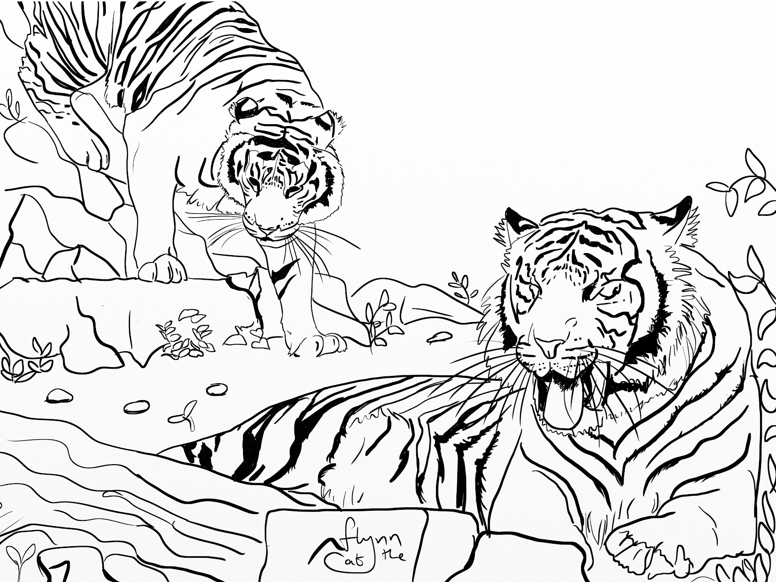 Image Result For Hunting Coloring Pages