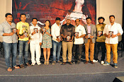 Meera Movie Audio release function photos-thumbnail-2