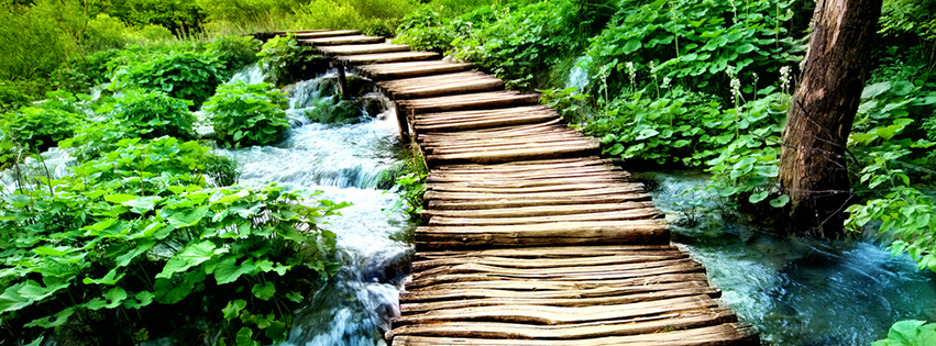 Waterfall Bridge Facebook Cover