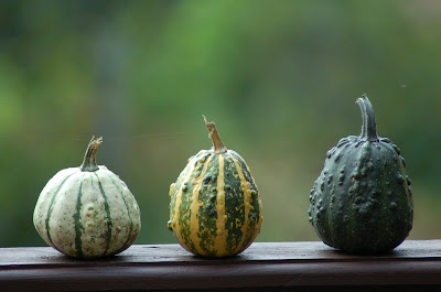 Halloween - Recepty z tekvice.