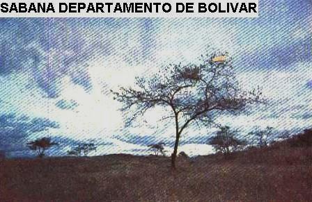 Biosemilla clima y pisos termicos en colombia - Pisos en estepa ...