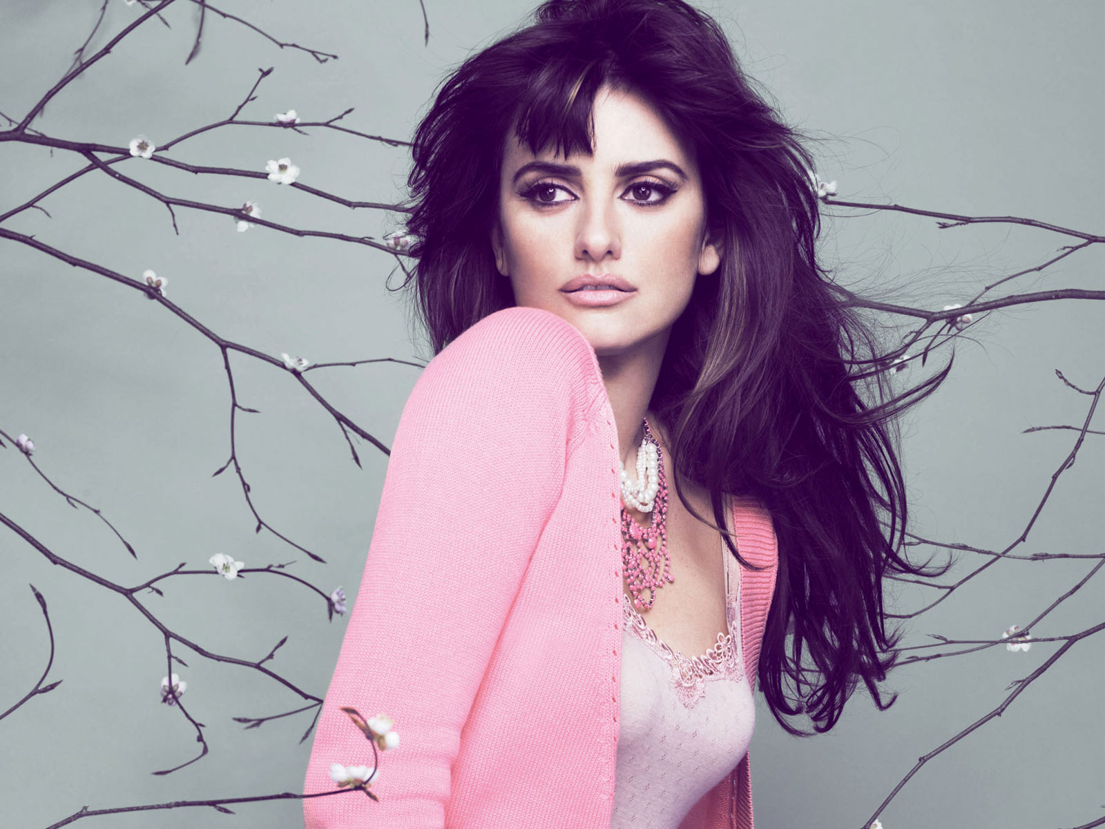 Penelope Cruz Hd Wallpapers Wall Pc