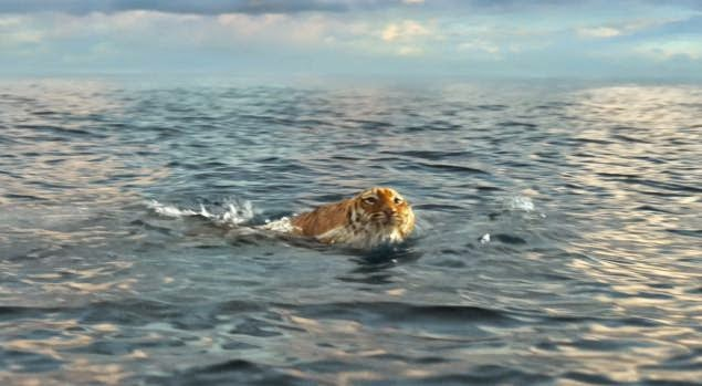 life of pi a movie collection one of the great messages of the film is the relativity of truth and how it is used for various purposes the version that the audience sees on the screen