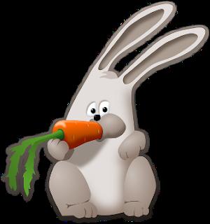 manfaat wortel, khasiat wortel, kandungan gizi wortel dan kesehatan