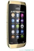 Nokia Asha 308 secara resmi diperkenalkan pada 25 september 2012 melalui situs conversation Nokia.com. Nokia mengklasifikasikan Asha 308 dalam ponsel kelas low-end. Menurut GFK dan IDC, kedua perangkat tersebut masuk ke klasifikasi kelas perangkat dengan harga terjangkau.Nokia mengedepankan kemampuan baterai dari Nokia Asha tersebut.