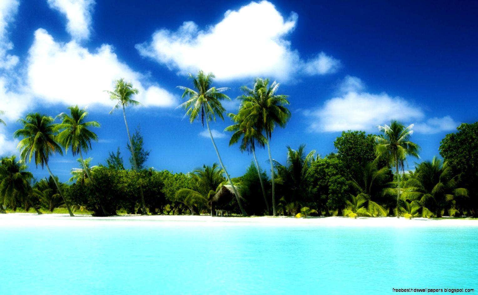 Widescreen Tropical Desktop Backgrounds Wallpaper