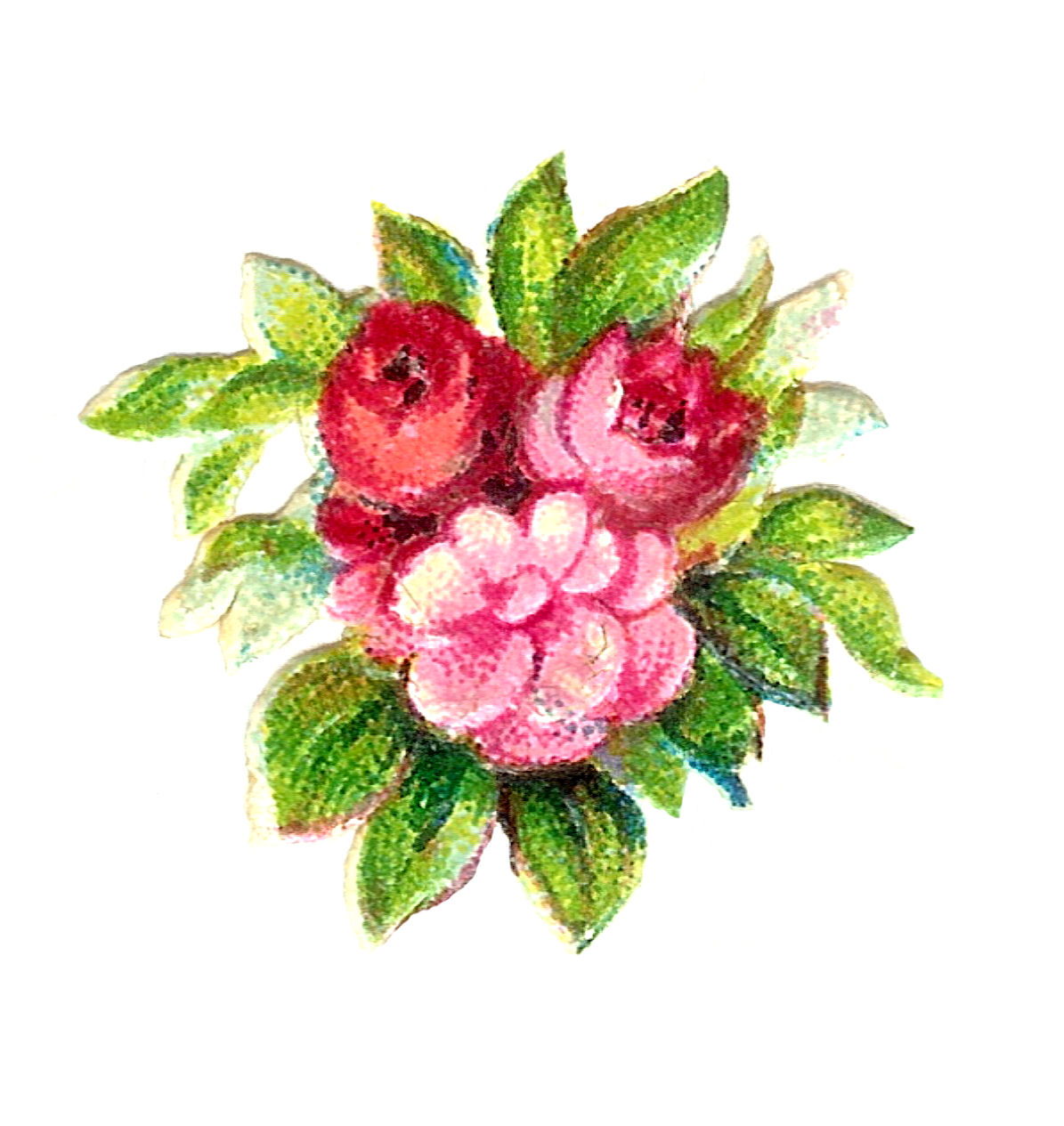 Antique Images Digital Vintage 3 Pink Rose Botanical Scrapbooking Bouquet Clip Art