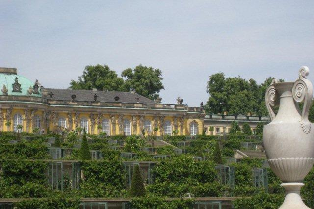 Palacio Schloss Sanssouci y vinedos escalonados