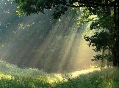 kuran ışığı