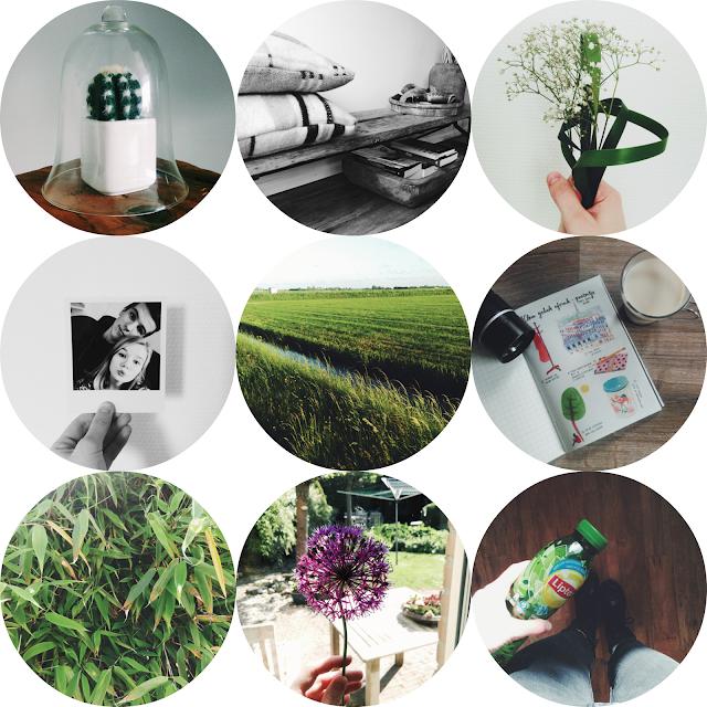 elke dag elbrich instagram diary