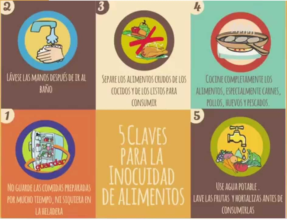 chile: alimentos inocuos chile: food safety: manual sobre las cinco