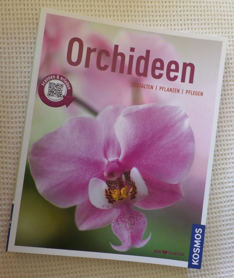 klusis wollf hlblog orchideen gestalten pflanzen pflegen. Black Bedroom Furniture Sets. Home Design Ideas