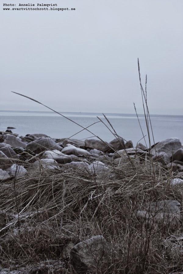 varberg, fästningen, hav, hvaet, varbergs, kallbadhuset, strandpromenaden