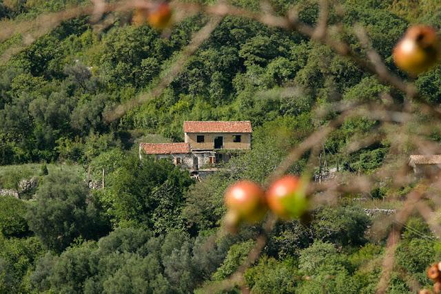 Czarnogóra - Opuszczone domostwa