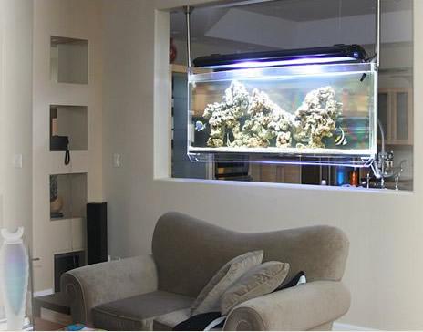 Coisas de l lia peixes com aqu rios estilosos for Decora la stanza di violetta