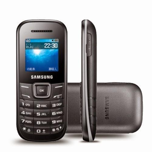 Samsung E1205T Flash Files