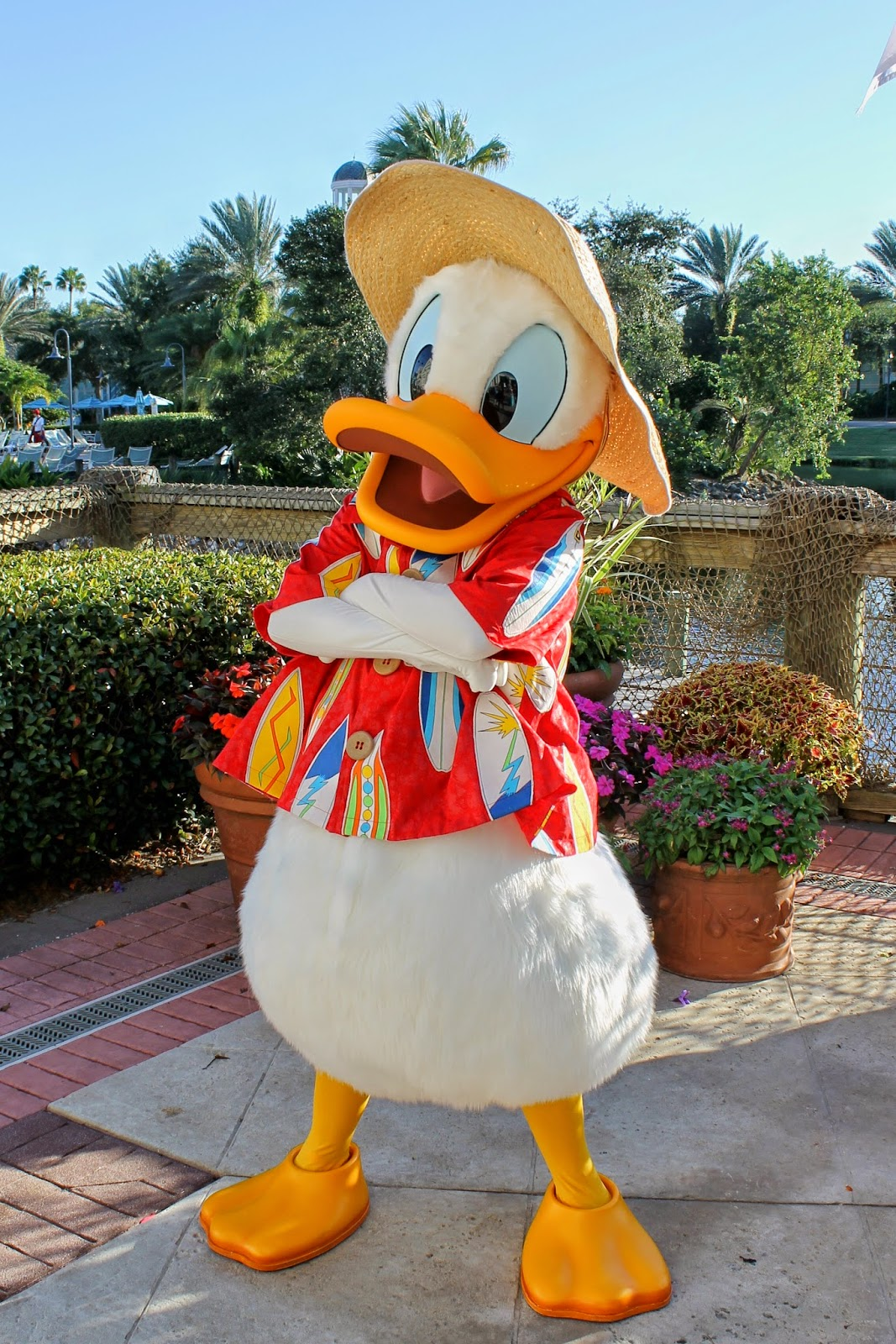 Donald Duck Halloween Disney Character Hunt Old Key West