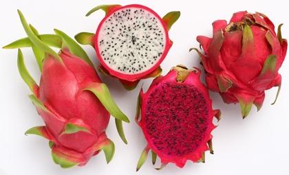 แก้วมังกร (Dragon Fruit / Pitaya) @ www.vietdragonfruit.com