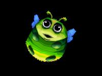 Firefly Gold