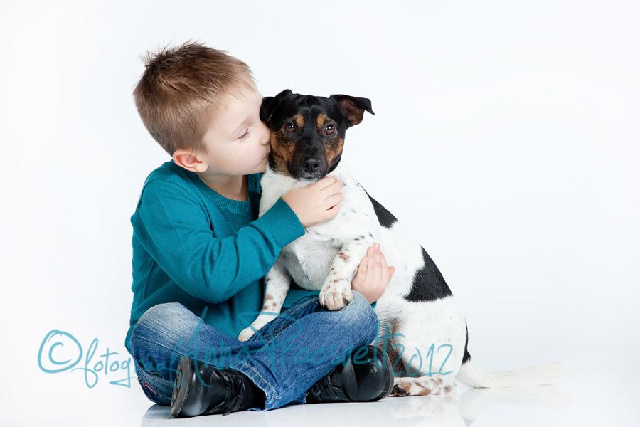 musi-koerale-lemmikloom