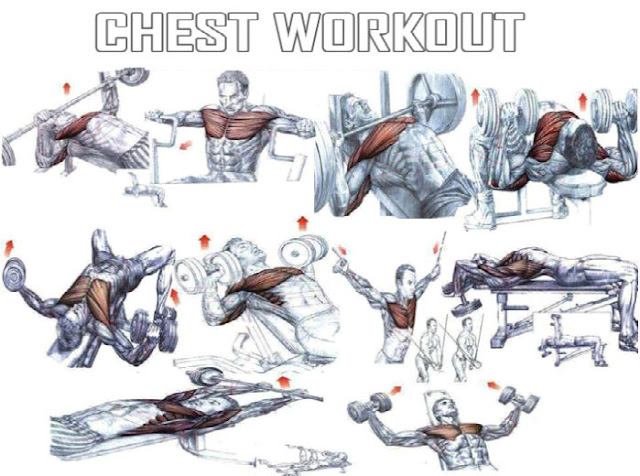 Good Chest Workout - Muscle and Fitness