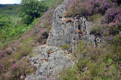 Calzada romana entre Roncesvalles y Saint Jean Pied de Port.