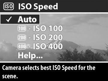 ISO Dalam Fotografi