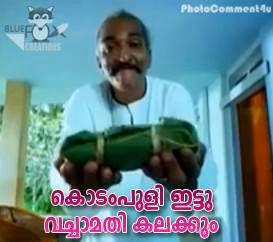 Malayalam Photo Comments - Kodam puli ittu vecha mathi Kalakkum - Amen movie